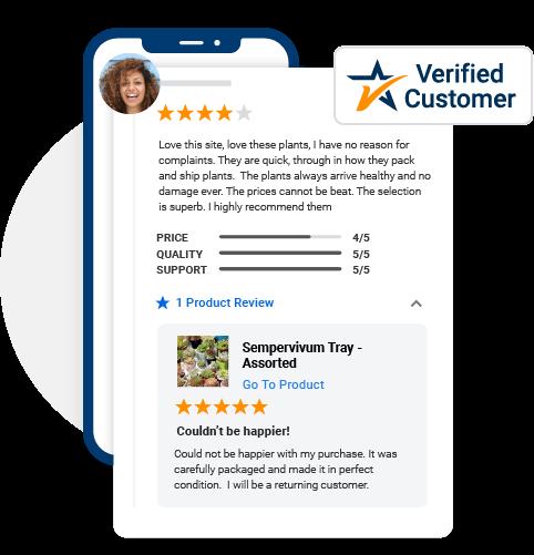 buy google reviews online